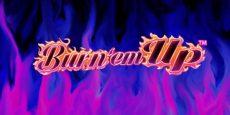Burn em Up